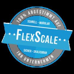 FlexScale_300x300